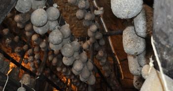 Il caciocavallo irpino - Grotte di calitri