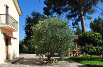 Bed and Breakfast l'Antica Fattoria