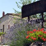 Agriturismo Sant'Elia