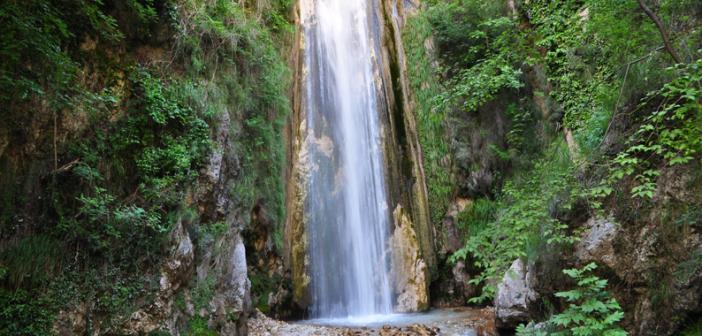 Oasi WWF Valle della Caccia