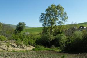 Vallesaccarda
