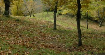 Sentiero tra le Valli del Sabato e del Calore