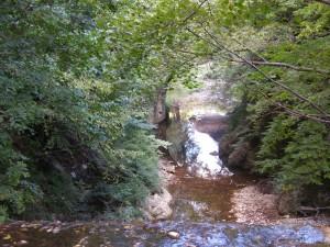 Sentiero fluviale del Sabato