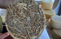 Pecorino irpino