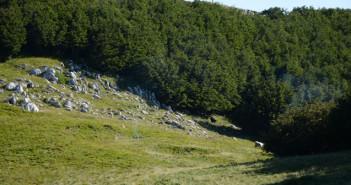 Monte Tuoro
