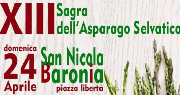 Sagra dell'asparago selvatico - 24 aprile 2016 - San Nicola Baronia - Irpinia