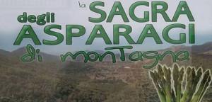 sagra-asparagi-salza irpina